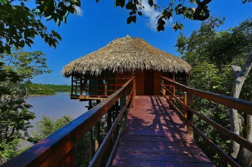 Cabana Panorâmica Juma Amazon Jungle Lodge