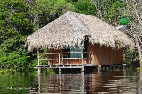Cabana Frente Rio Juma Amazon Jungle Lodge